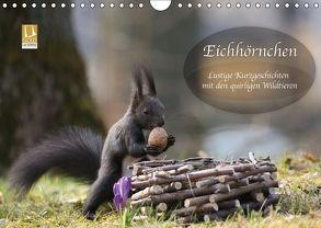Eichhörnchen – Lustige Kurzgeschichten mit den quirligen Wildtieren (Wandkalender 2018 DIN A4 quer) von Cerny,  Birgit