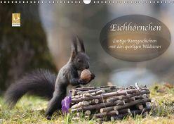 Eichhörnchen – Lustige Kurzgeschichten mit den quirligen Wildtieren (Wandkalender 2019 DIN A3 quer) von Cerny,  Birgit