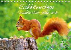 Eichhörnchen-Nussknacker ganz nah (Tischkalender 2020 DIN A5 quer) von Jazbinszky,  Ivan