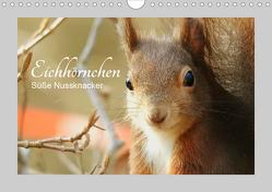 Eichhörnchen – Süße Nussknacker (Wandkalender 2021 DIN A4 quer) von Fofino