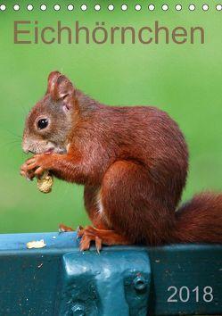 Eichhörnchen (Tischkalender 2018 DIN A5 hoch) von SchnelleWelten,  k.A.