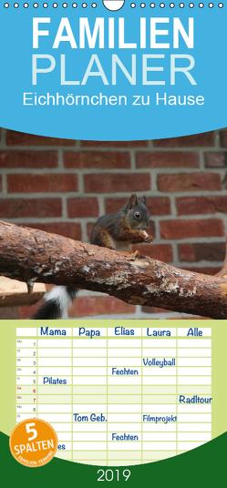 Eichhörnchen zu Hause – Familienplaner hoch (Wandkalender 2019 , 21 cm x 45 cm, hoch) von Peitz,  Martin