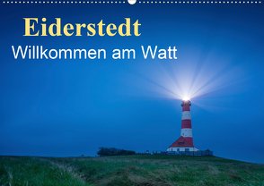 Eiderstedt – Willkommen am Watt (Wandkalender 2020 DIN A2 quer) von Wasilewski,  Martin