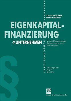 Eigenkapitalfinanzierung von Endfellner,  Clemens, Puchinger,  Martin