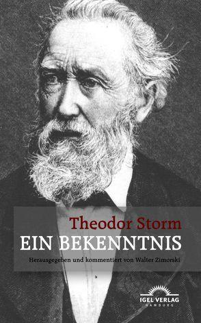 Ein Bekenntnis. Novella Medici von Storm,  Theodor, Zimorski,  Walter
