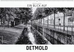 Ein Blick auf Detmold (Wandkalender 2018 DIN A2 quer) von W. Lambrecht,  Markus