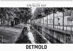 Ein Blick auf Detmold (Wandkalender 2019 DIN A2 quer) von W. Lambrecht,  Markus
