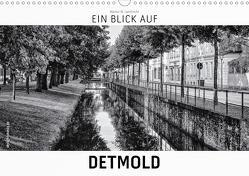 Ein Blick auf Detmold (Wandkalender 2021 DIN A3 quer) von W. Lambrecht,  Markus