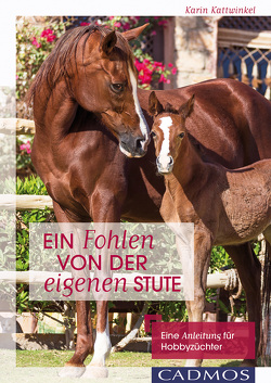 Ein Fohlen von der eigenen Stute von Kattwinkel,  Karin