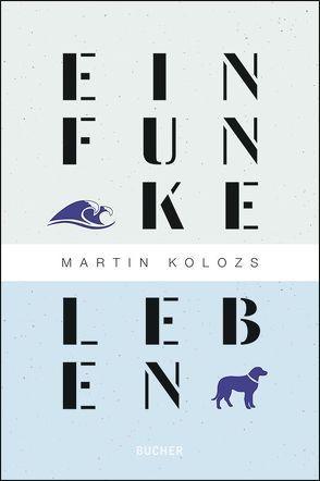 Ein Funke Leben von Kolozs,  Martin