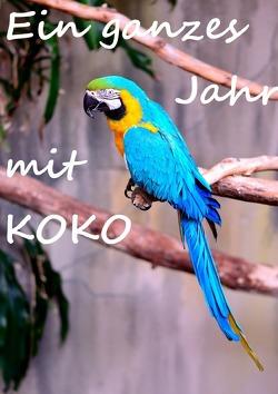 Ein ganzes Jahr mit Koko von Fee,  Rosi
