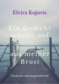 Ein Gedicht schreit auf aus meiner Brust von Kujovic,  Elvira