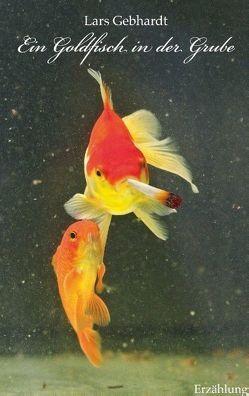 Ein Goldfisch in der Grube von Gebhardt,  Lars