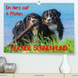 Ein Herz auf 4 Pfoten – Berner Sennenhund (Premium, hochwertiger DIN A2 Wandkalender 2020, Kunstdruck in Hochglanz) von Starick,  Sigrid