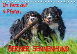 Ein Herz auf 4 Pfoten – Berner Sennenhund (Tischkalender 2020 DIN A5 quer) von Starick,  Sigrid