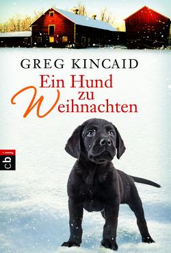 Ein Hund zu Weihnachten von Kincaid,  Greg, Zigldrum,  Gabriele