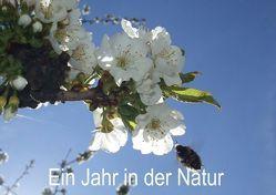 Ein Jahr in der Natur (Tischaufsteller DIN A5 quer) von Schagow,  Veit