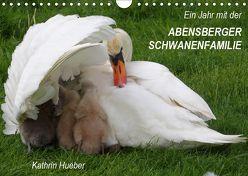 Ein Jahr mit der Abensberger Schwanenfamilie (Wandkalender 2019 DIN A4 quer) von Hueber,  Kathrin