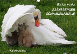 Ein Jahr mit der Abensberger Schwanenfamilie (Wandkalender 2020 DIN A3 quer) von Hueber,  Kathrin