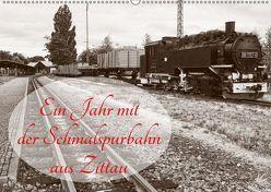 Ein Jahr mit der Schmalspurbahn aus Zittau (Wandkalender 2019 DIN A2 quer) von Valley,  Joy