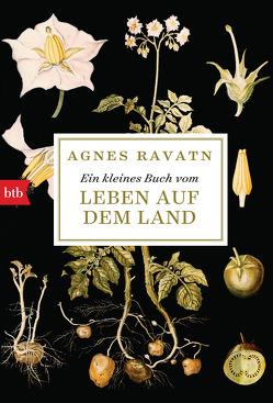 Ein kleines Buch vom Leben auf dem Land von Gschwilm,  Julia, Ravatn,  Agnes