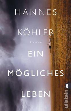 Ein mögliches Leben von Köhler,  Hannes