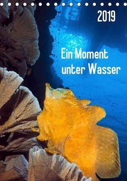 Ein Moment unter Wasser (Tischkalender 2019 DIN A5 hoch) von Jager,  Henry
