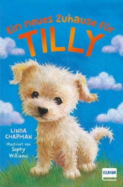 Ein neues Zuhause für Tilly von Chapman,  Linda, Williams,  Sophy