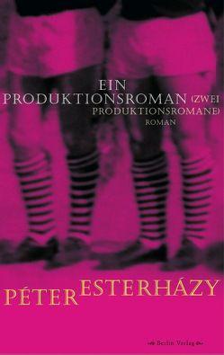 Ein Produktionsroman (Zwei Produktionsromane) von Esterházy,  Péter, Mora,  Terézia