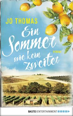 Ein Sommer wie kein zweiter von Reichart-Schmitz,  Gabi, Thomas,  Jo