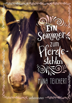 Ein Sommer zum Pferdestehlen von Teichert,  Mina