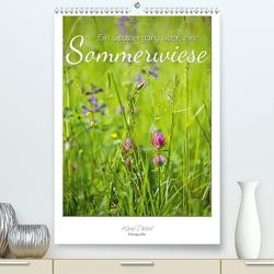 Ein Spaziergang über eine Sommerwiese (Premium, hochwertiger DIN A2 Wandkalender 2021, Kunstdruck in Hochglanz) von Dietzel,  Karin