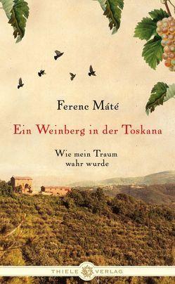 Ein Weinberg in der Toskana von Bauer,  Martin, Máté,  Ferenc