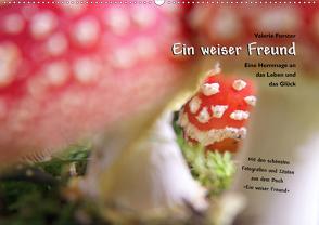Ein weiser Freund – Kalender (Wandkalender 2020 DIN A2 quer) von Forster,  Valerie