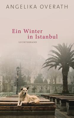 Ein Winter in Istanbul von Overath,  Angelika
