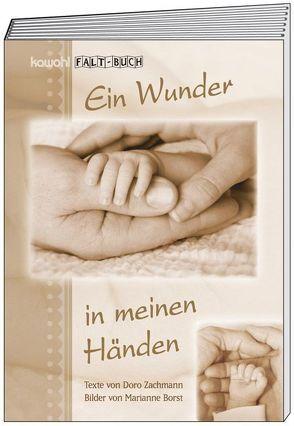 Ein Wunder in meinen Händen von Zachmann,  Doro
