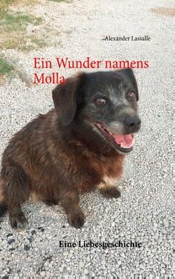 Ein Wunder namens Molla von Lassalle,  Alexander