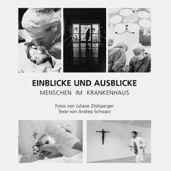 Einblicke und Ausblicke von Schwarz,  Andrea, Zitzlsperger,  Juliane