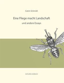 Eine Fliege macht Landschaft und andere Essays von Schmidt,  Catrin