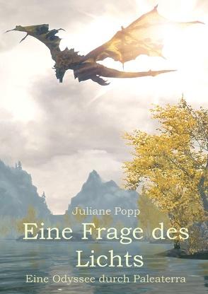 Eine Frage des Lichts von Popp,  Juliane