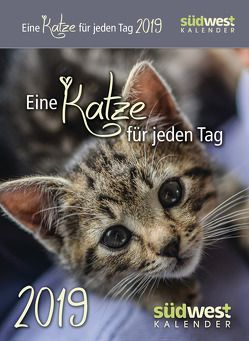 Eine Katze für jeden Tag 2019 Tagesabreißkalender