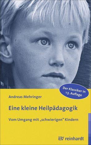 Eine kleine Heilpädagogik von Mehringer,  Andreas