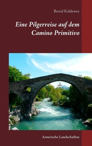 Eine Pilgerreise auf  dem Camino Primitivo von Koldewey,  Bernd