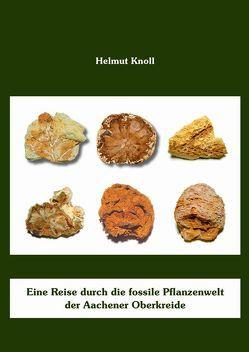 Eine Reise durch die fossile Pflanzenwelt der Aachener Oberkreide von Knoll,  Helmut