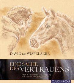 Eine Sache des Vertrauens von de Wispelaere,  David
