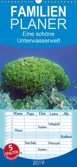 Eine schöne Unterwasserwelt – Familienplaner hoch (Wandkalender 2019 , 21 cm x 45 cm, hoch) von Bauch,  Dorothee