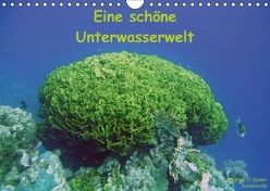Eine schöne Unterwasserwelt (Wandkalender 2018 DIN A4 quer) von Bauch,  Dorothee