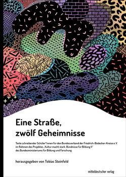 Eine Straße, zwölf Geheimnisse von Steinfeld,  Tobias