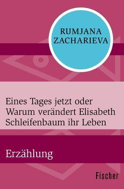 Eines Tages jetzt oder Warum verändert Elisabeth Schleifenbaum ihr Leben von Zacharieva,  Rumjana