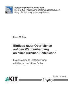 Einfluss rauer Oberflächen auf den Wärmeübergang an einer Turbinen-Seitenwand — experimentelle Untersuchung mit thermosensitiver Farbe von Pütz,  Franz M.